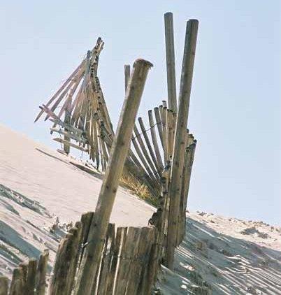La Dune du Pyla 897