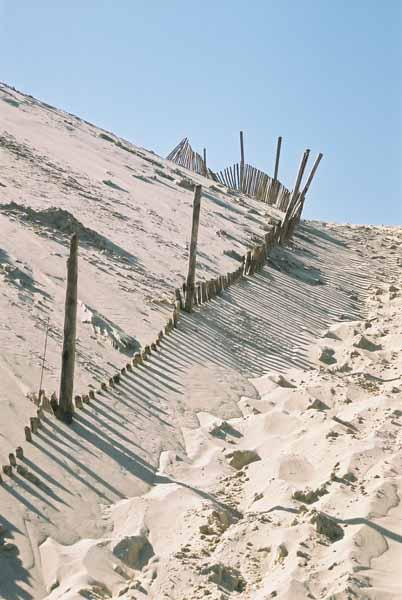 La Dune du Pyla 899