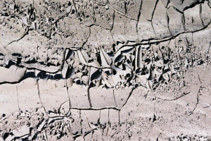 Cracked Mud 1