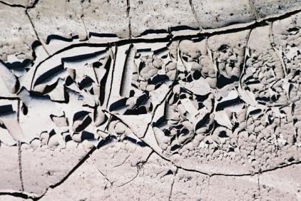 Cracked Mud 5
