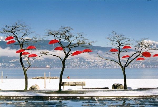 Red Umbrellas 2