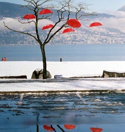 Red Umbrellas 3