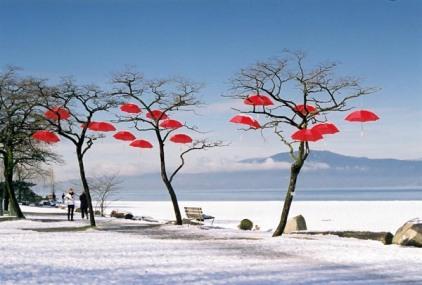 Red Umbrellas 4