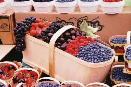 Ottawa Market 65