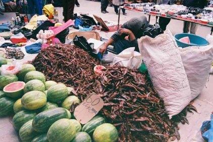 Mexico Market 79