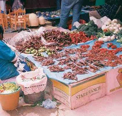 Mexico Market 82