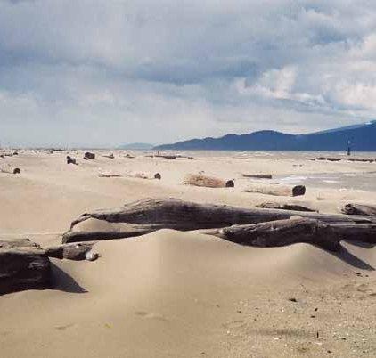 Land and Sea 12