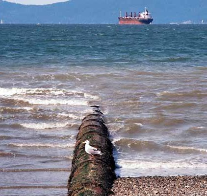Land and Sea 8