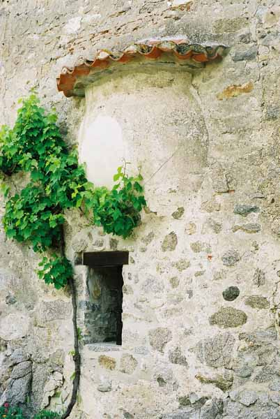 Walls and Windows 141