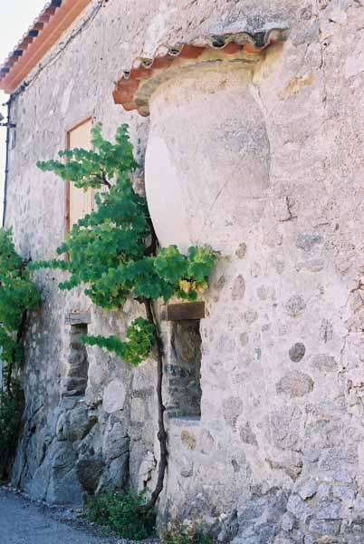 Walls and Windows 142
