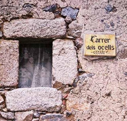 Walls and Windows 163