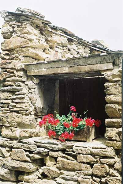 Walls and Windows 173
