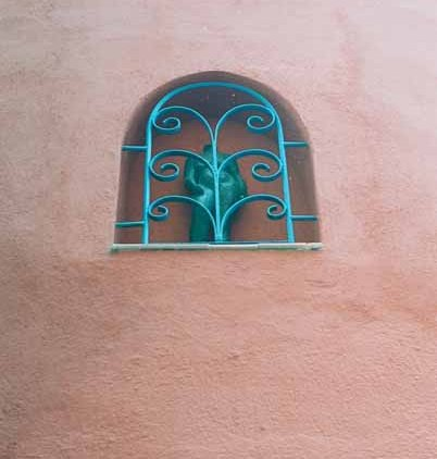 Walls and Windows 179