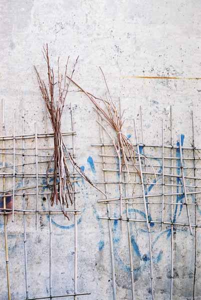 Walls and Windows 198