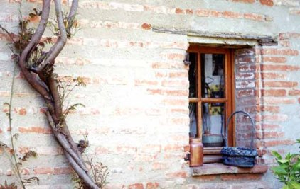 Walls and Windows 237