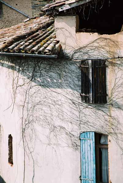 Walls and Windows 245