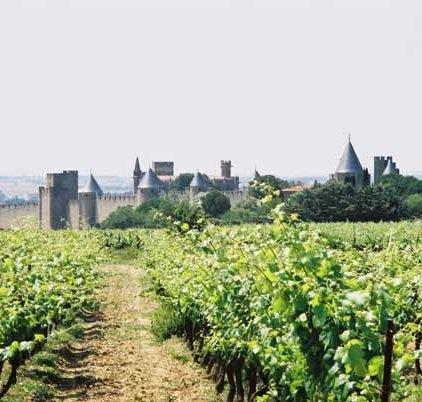 Carcassonne 375