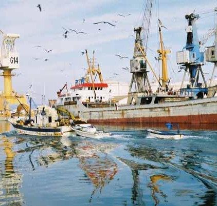 Fishing Boats 605