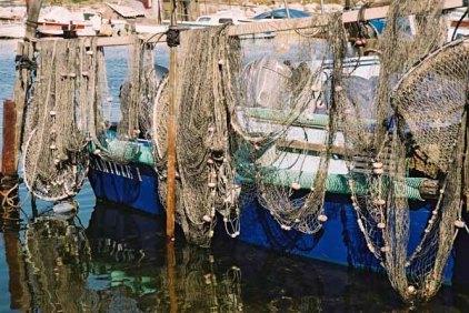 Fishing Nets 619