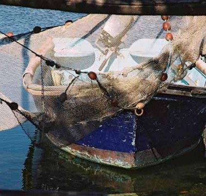 Fishing Nets 620