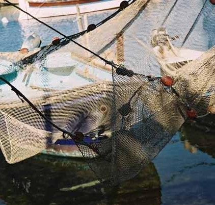 Fishing Nets 621