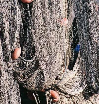 Fishing Nets 624