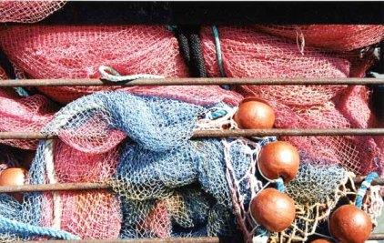 Fishing Nets 637