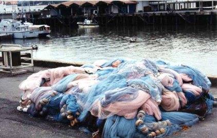Fishing Nets 645