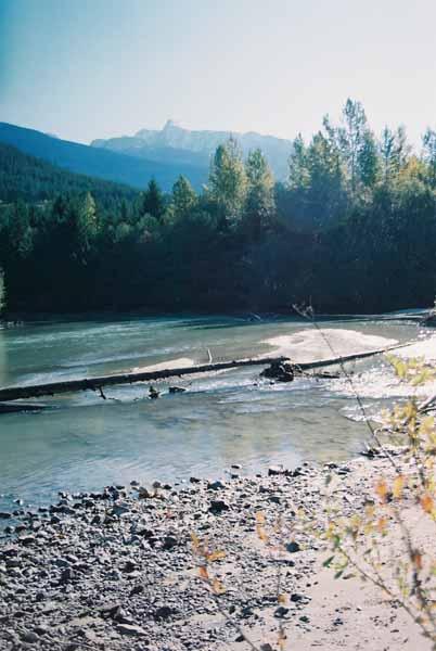 Whistler 988