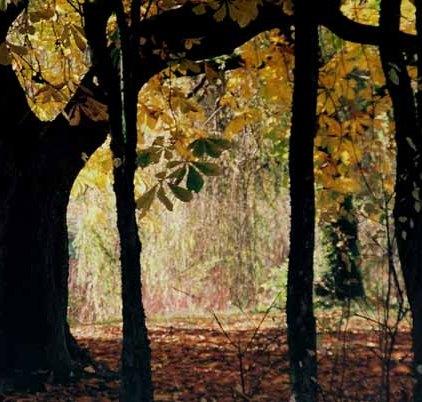 Autumn 828