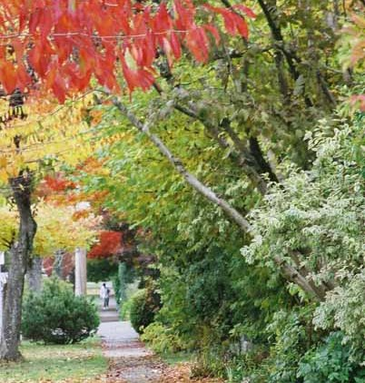 Autumn 834