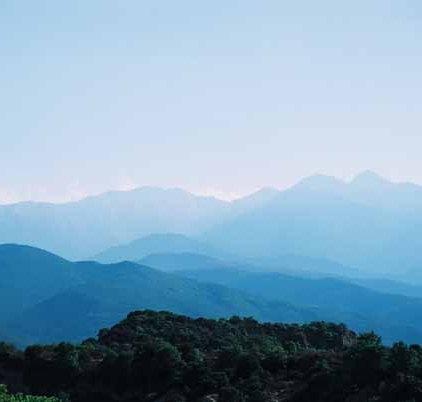 Pyrenees 1037