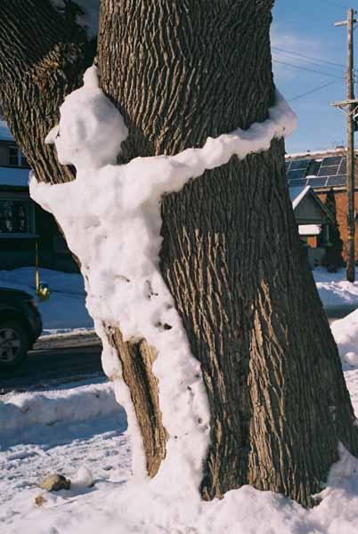 Snowman 1089