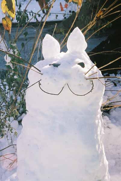 Snow Cat 1090