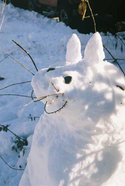 Snow Cat 1091
