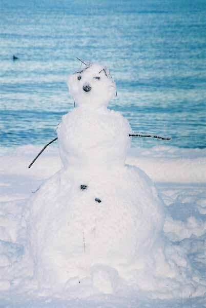Snowman 1093