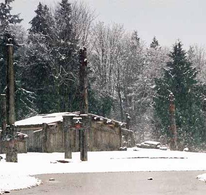 Haida Village 1273