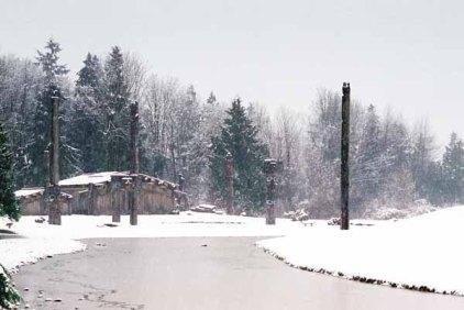 Haida Village 1274