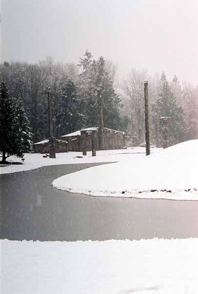Haida Village 1275