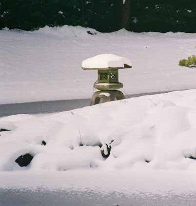Nitobe Garden 1279