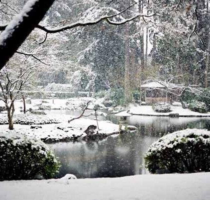 Nitobe Garden 1289