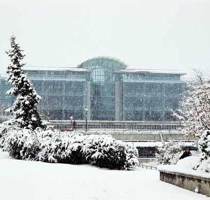 Koerner Library 1315