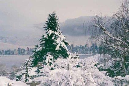 Vancouver 1344