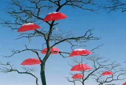 Rain Blossom Project 1363