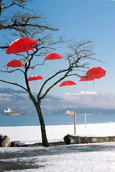 Rain Blossom Project 1371