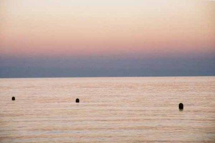 Collioure 1439